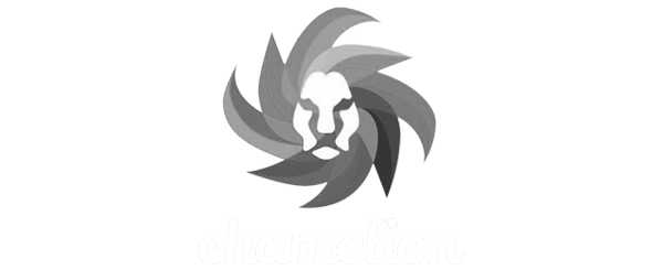 Chamelion | Partner Iconito